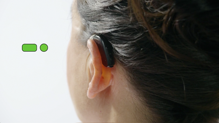 oticon hearing aid instructions
